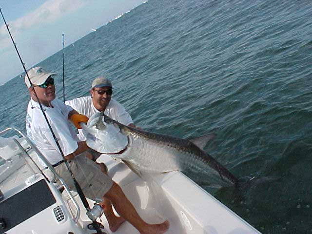 Tarpon fishing fort myers fishing charter fort myers for Tarpon fishing florida